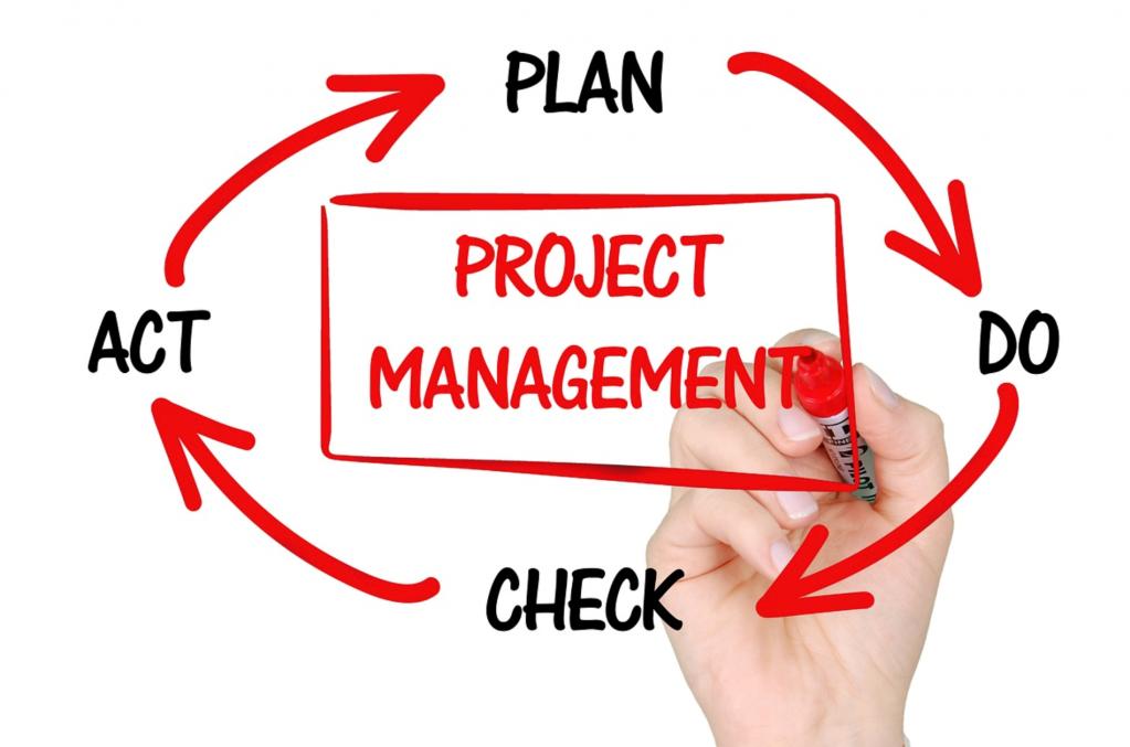 специализация project manager, основные обязанности